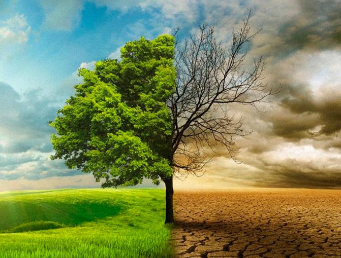 Cambio climatíco
